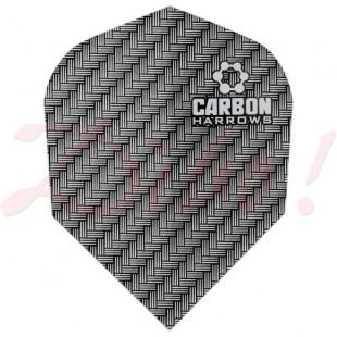 Carbon flight 1205